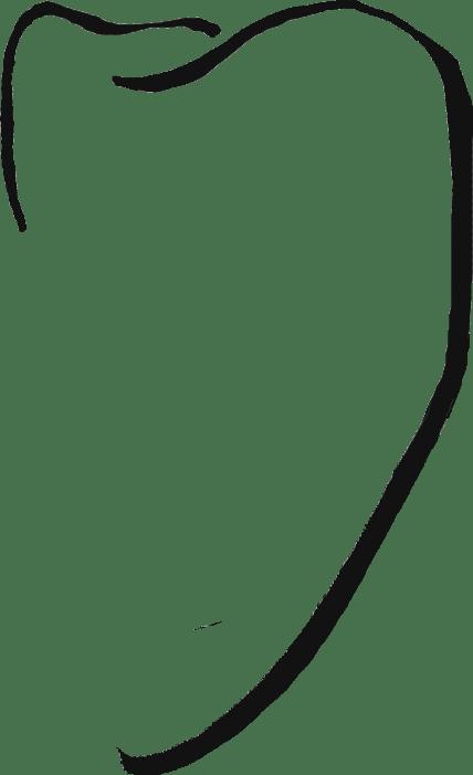 skizze von praemolar